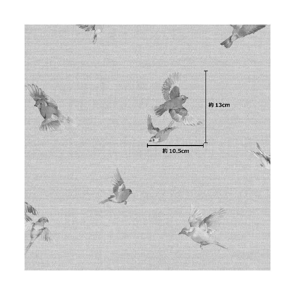 rasch 2020 輸入壁紙 401158 グレージュ グレー 鳥 アニマル クロス 10m巻 DIY はがせる ドイツ製  国内在庫品|decoall|03