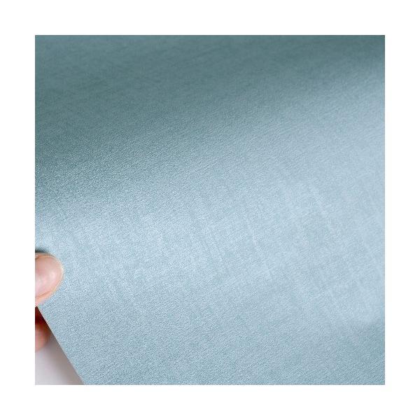 はじめてセット rasch 2020 輸入壁紙   402469  ブルーグレー ブルー 無地  クロス 10m巻 DIY は がせる ドイツ製  国内在庫品|decoall|03