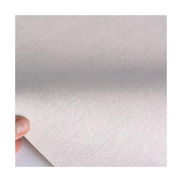 はじめてセット rasch 2020 輸入壁紙  489767 ライトグレー グレー 無地  クロス 10m巻 DIY は がせる ドイツ製  国内在庫品|decoall|03