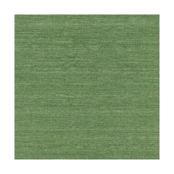 はじめてセット rasch 2020 輸入壁紙  528862 グリーン 緑 無地 クロス 10m巻 DIY は がせる ドイツ製  国内在庫品|decoall