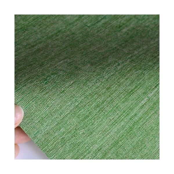 はじめてセット rasch 2020 輸入壁紙  528862 グリーン 緑 無地 クロス 10m巻 DIY は がせる ドイツ製  国内在庫品|decoall|03