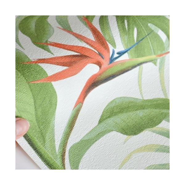 はじめてセット rasch 2020 輸入壁紙   529029 ホワイト グリーン 葉っぱ トロピカル 南国  クロス 10m巻 DIY は がせる ドイツ製  国内在庫品 decoall 03