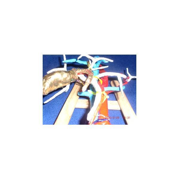 動脈静脈門脈胆道4管立体模型標準型作成キット|deepseawartergm0|19