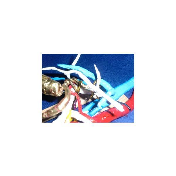 動脈静脈門脈胆道4管立体模型標準型作成キット|deepseawartergm0|20