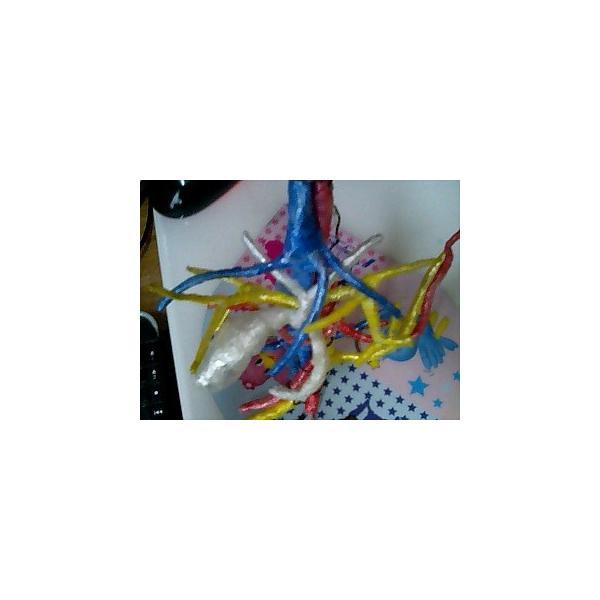 動脈静脈門脈胆道4管立体模型標準型作成キット|deepseawartergm0|03