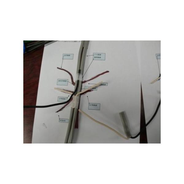 動脈静脈門脈胆道4管立体模型標準型作成キット|deepseawartergm0|07