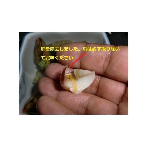 ボイルマガキ貝殻付き4800g冷凍パック|deepseawartergm0|07