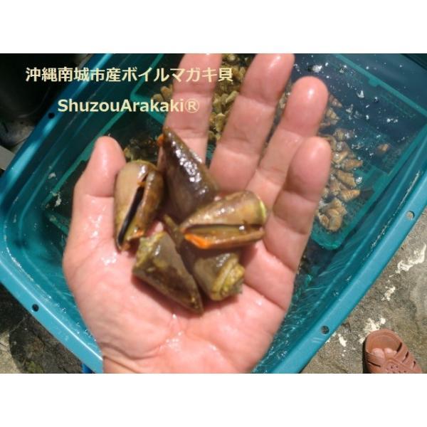 ボイルマガキ貝殻付き4800g冷凍パック|deepseawartergm0|08