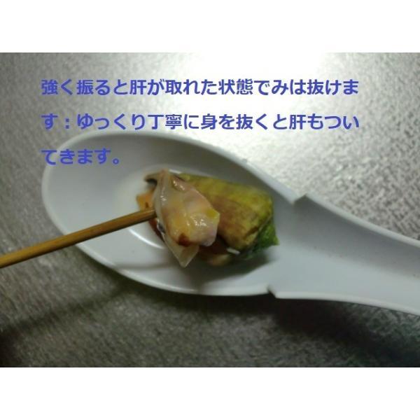 ボイルマガキ貝殻付き4800g冷凍パック|deepseawartergm0|10