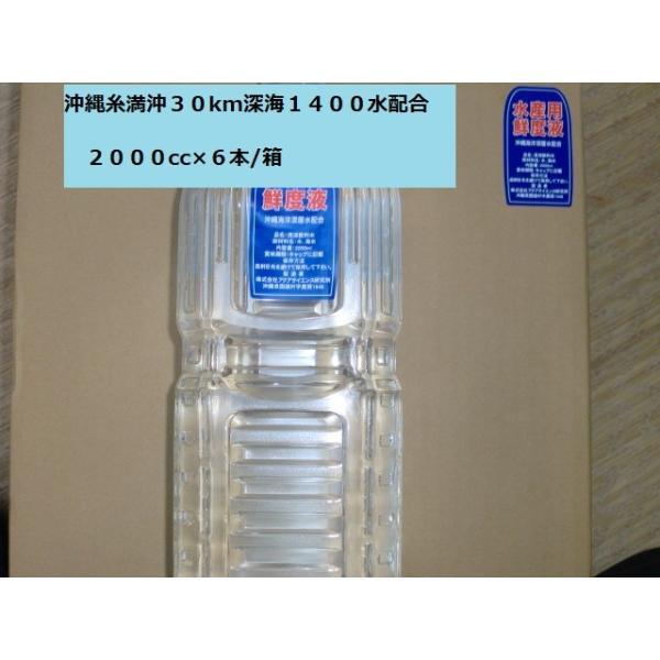 1,000倍希釈用深層水調合液水産用鮮度液60db2000ccボトル6本1箱|deepseawartergm0