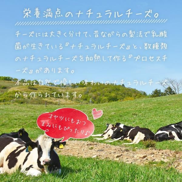 チーズ タラ ポイント消化 10月1日から値上げ!訳あり不揃いチーズとタラの白身サンド カマンベール 110g メール便送料無料 チーズ 鱈 ちーず たら カルシウム|dejimaya-netstore|06