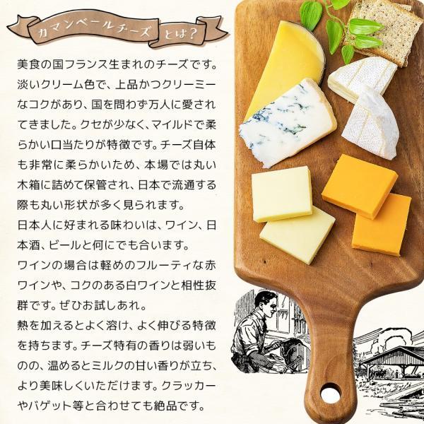チーズ タラ ポイント消化 10月1日から値上げ!訳あり不揃いチーズとタラの白身サンド カマンベール 110g メール便送料無料 チーズ 鱈 ちーず たら カルシウム|dejimaya-netstore|09