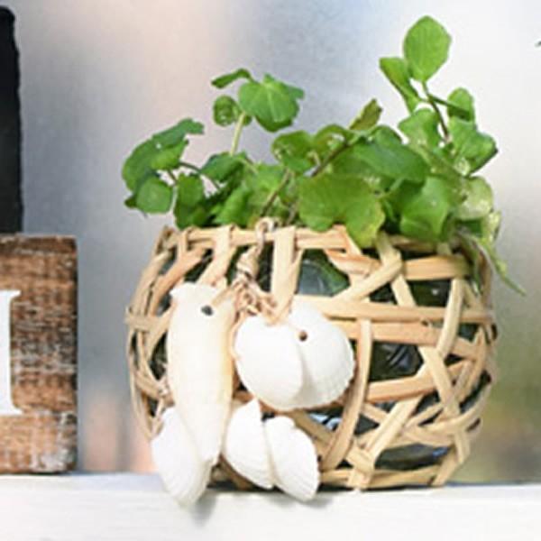 プランター 花瓶 マリンCL ガラスホルダー フラワーベース 植木鉢