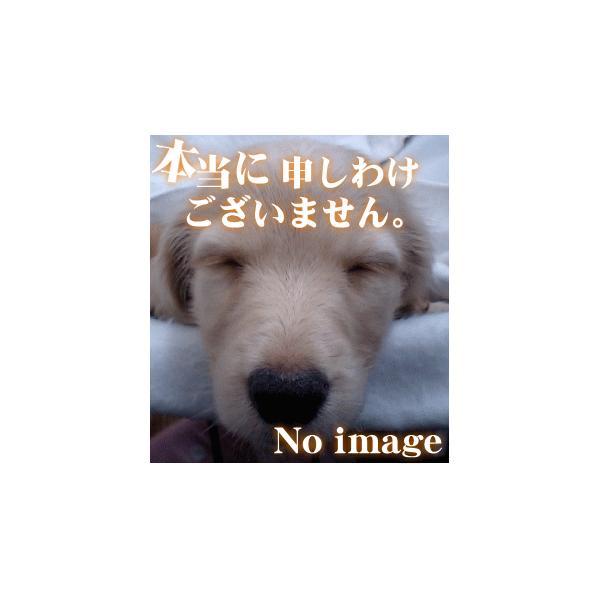 日立 エアコン 用の ホコリキャッチャー ★ HITACHI RAS-V25X123