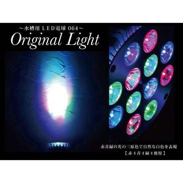 三原色で明るく照らす水槽用LED電球