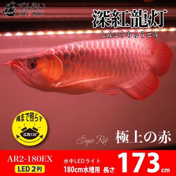 アロワナ ライト 紅龍 180cm水槽用 深紅龍灯 スーパーレッド レベル2 EX LED 2列 水中 照明 水中蛍光灯 でんらい AR2-180-EX AR2-EX 送料無料