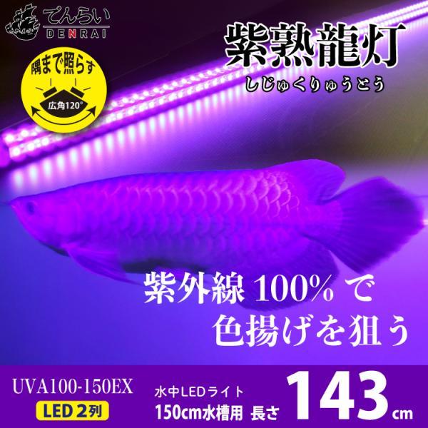 アロワナ ライト 紫外線100% 紅龍 金龍 150cm水槽用 紫熟龍灯 ナイトメロー EX LED 2列 水中 照明 水中蛍光灯 でんらい UV100-A-150EX uv100-a-ex 送料無料