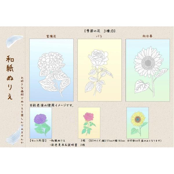 和紙ぬりえ 季節の花 3種b 紫陽花バラ向日葵 大人の塗り絵
