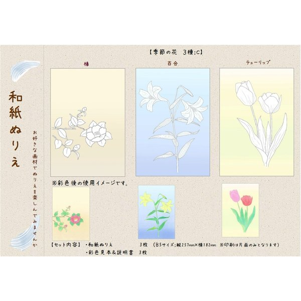 和紙ぬりえ 季節の花 3種c 椿百合チューリップ 大人の