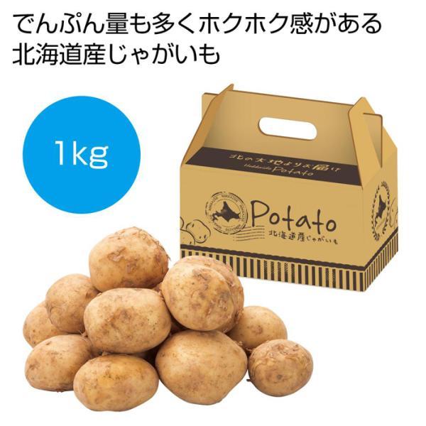 2561730 【16個セット】北海道産じゃがいも1kg