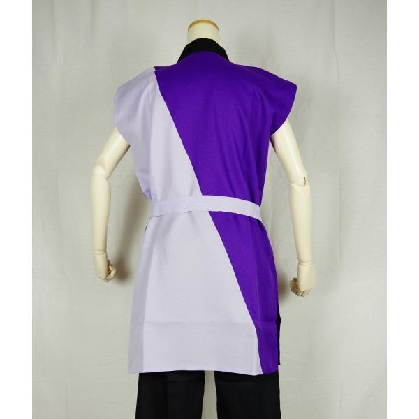 よさこいコスチューム 上衣 =よさこい衣装 YOSAKOIソーラン よさこい祭り= (73001)|dento-wako|03