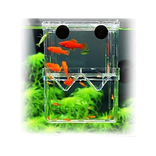 PANASONN産卵ケース隔離ケース多機能魚繁殖隔離飼養ボックスメダカ産卵水槽孵化産卵箱水族館アクセサ