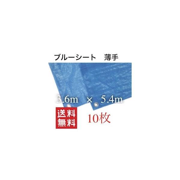 ブルーシート 3.6 防水 色 サイズ 3.6×5.4 3600 カラー 規格 薄手シート 養生シート 軽量シート 防水シート レジャーシー