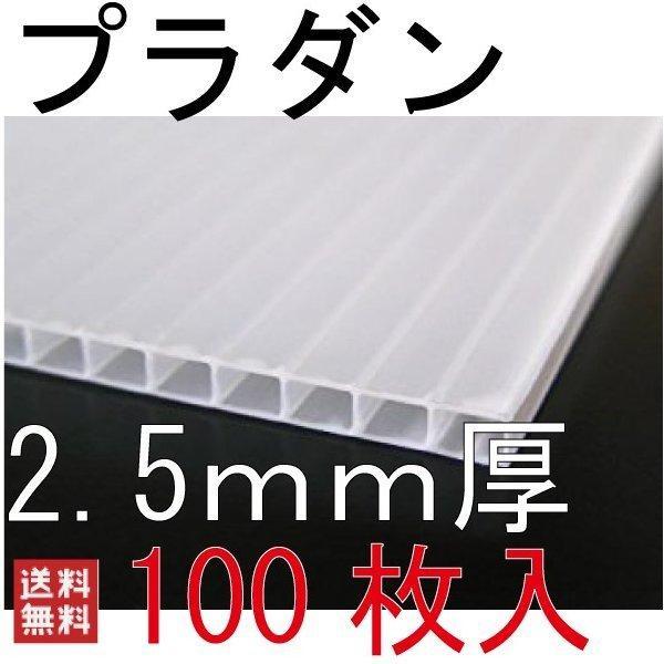 プラダン シート プラベニヤ プラスチックダンボール 100枚 2.5mm 透明 仕切り パーテーション プラダンボード プラスチック段ボー