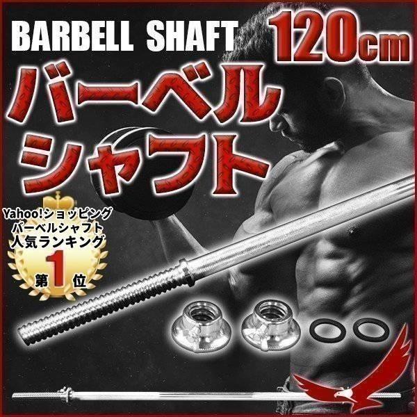 バーベルシャフト 120cm ダンベル ストレートバー ストレートシャフト ウエイト 筋トレ スポーツ 練習用品 トレーニング シェイプアップ 体力強化 1位