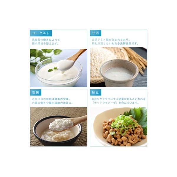 ヨーグルトメーカー 低温調理 甘酒 牛乳パック 発酵 塩麹 1L 発酵フードメーカー 手作り 乳製品 天然酵母 パン カスピ海ヨーグルト r1 lg21 ドリテック|dish|06
