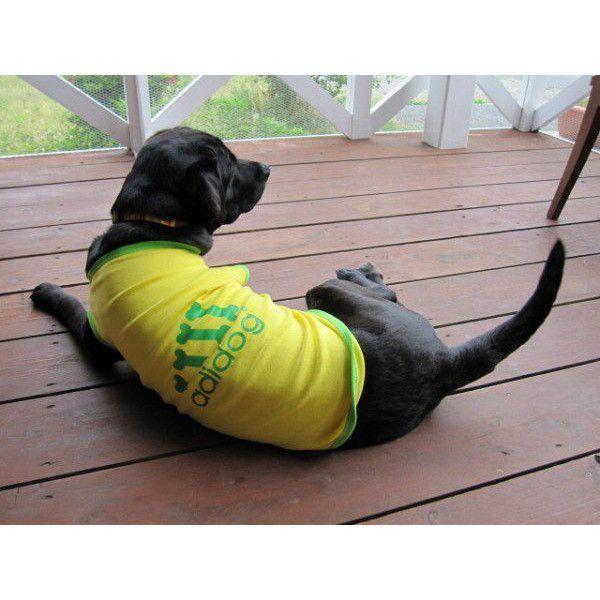 犬服 adidog タンクトップ(中型犬用)犬の服2点購入でメール便送料無料 ドッグウェア アディドッグ|dism|05
