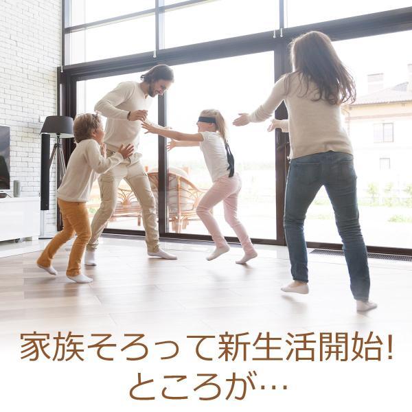 防音 断熱 下地材 床デコシート防音タイプ  切り売り  遮音マット 遮音シート 防音対策|diystyle|04