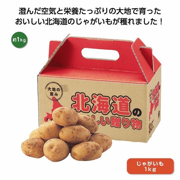 大地の恵み 北海道産じゃがいも1kg ★ロット割れ不可 24個単位でご注文願います