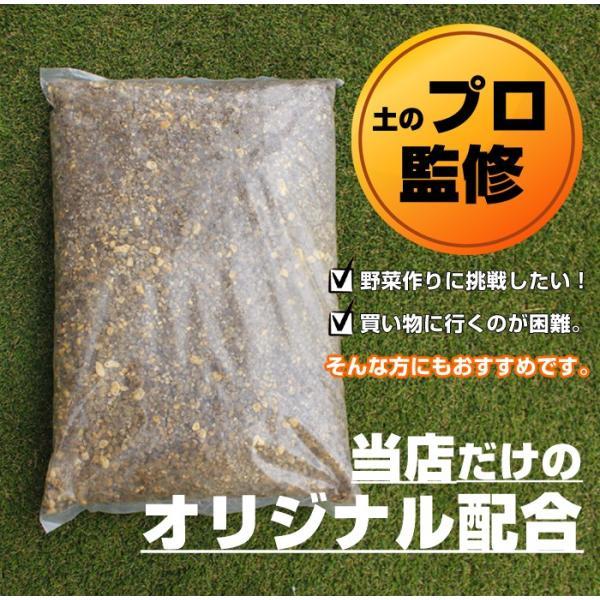 初めての方 おすすめ オリジナル商品 かんたん培養土 家庭菜園 植木 ハーブ スターター 土 セット 30L|doanosoto|02
