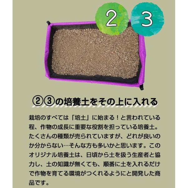 初めての方 おすすめ オリジナル商品 かんたん培養土 家庭菜園 植木 ハーブ スターター 土 セット 30L|doanosoto|05