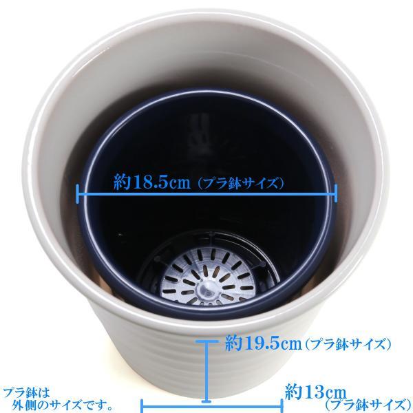 植木鉢 陶器 おしゃれ サイズ 25.5cm 安くて丈夫 フラワーロード 白釉 8号|docchan|04