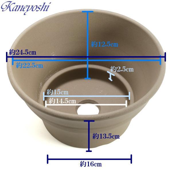 植木鉢 陶器 おしゃれ サイズ 24.5cm 安くて丈夫 ビオラ モカ 8号 docchan 03
