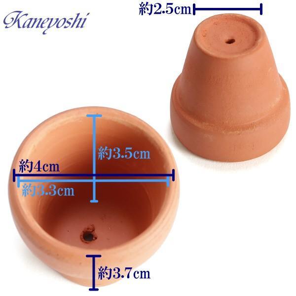 植木鉢 陶器 おしゃれ サイズ 4cm ミニミニテラコッタ|docchan|02