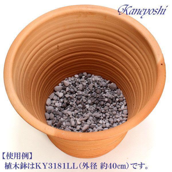 【お値打ち】 清潔 使い切り 鉢底の石 パーライト 200g 鉢底ネット入り|docchan|04