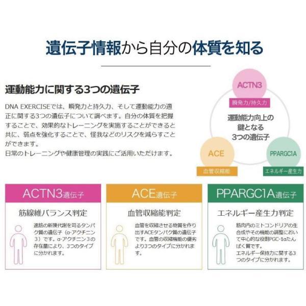 検査キット/自宅/郵送/体質/筋トレ/トレーニング/DNA EXERCISE遺伝子検査キット|doctorsmarche|04
