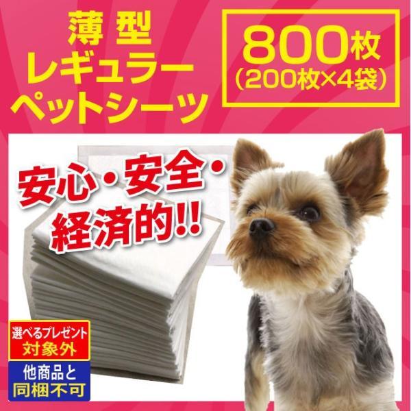 ペットシーツ レギュラー800枚(200枚×4袋)|dogparadise