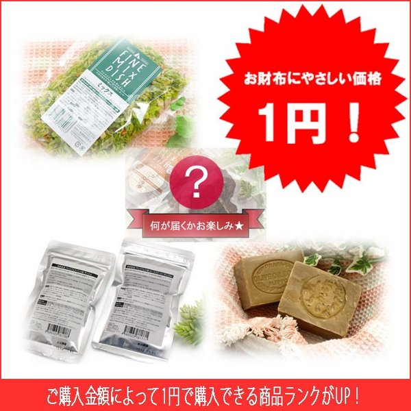 商品到着後レビューを書いて1円で商品をGET! dogparadise