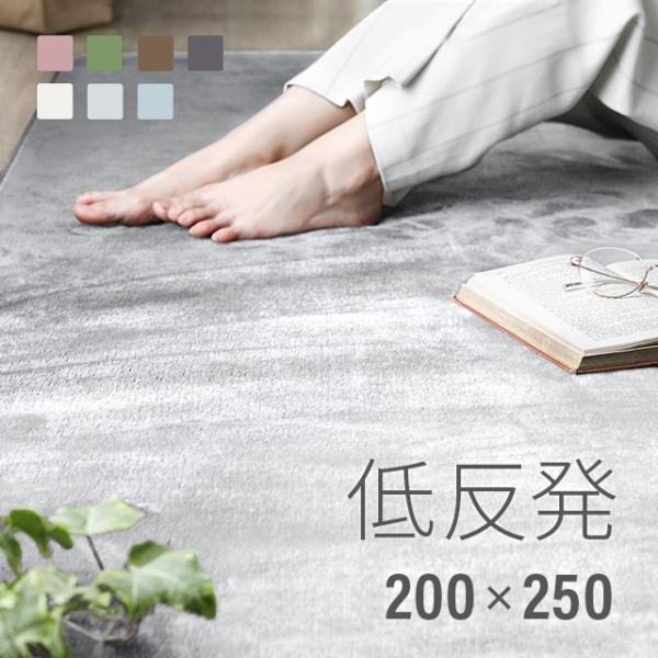 ラグ 洗える ラグマット 三畳 シャギーラグ リビングラグ カーペット 低反発 200×250 防音カーペット|don2