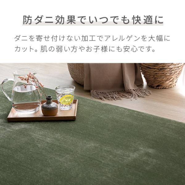 ラグ 洗える ラグマット 三畳 シャギーラグ リビングラグ カーペット 低反発 200×250 防音カーペット|don2|17