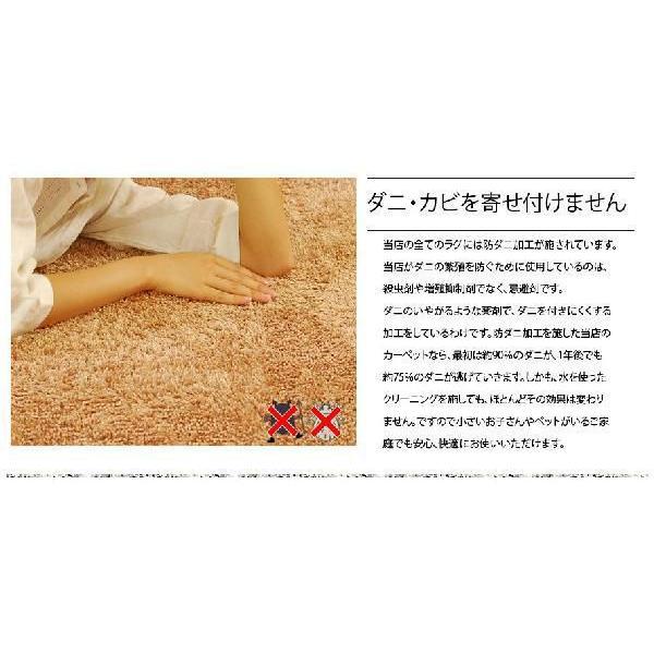 ラグ 洗える ラグマット シャギーラグ リビングラグ カーペット 約200×140サイズ 三畳 3畳 洗える  ウォッシャブル|don2|02
