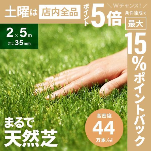 人工芝 ロール リアル人工芝 芝生 ロールタイプ 2m×5m 芝生マット|don2