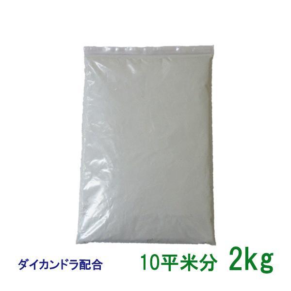 手まき種子ダイカンドラ配合2kg入 10平米分
