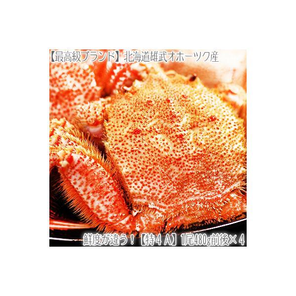 (送料無料 毛ガニ 大型)北海道雄武産 480g前後×5尾(最高級 毛蟹 北海道産 濃厚 蟹味噌 ボイル済み お中元 お歳暮)
