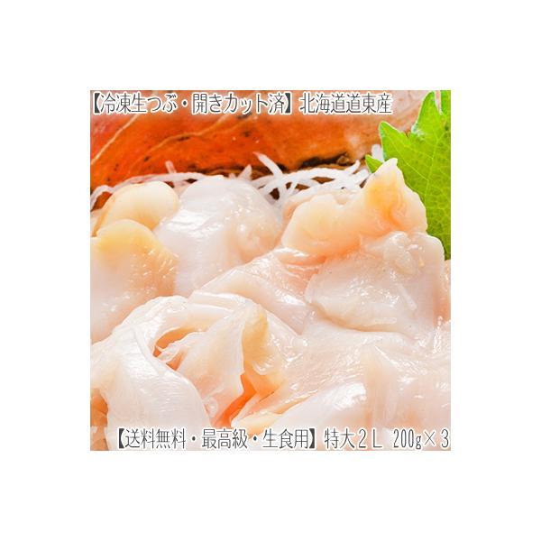 (送料無料 つぶ貝 お刺身 北海道産)特大 2L 生冷凍 750g(250g×3 ツブ貝開き)(生食用)道東産は甘み、コリコリ感が絶品!(剥きつぶ エゾバイ貝 生つぶ)