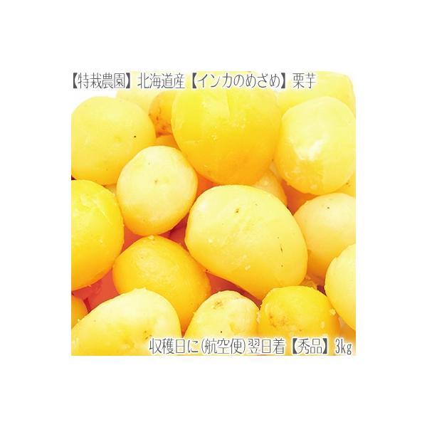 (送料無料 じゃがいも 北海道産)北海道 インカのめざめ 正規品 3kg(ジャガイモ 最高級 収穫日に空輸で翌日着!北海道ブランド 特別栽培農園産)